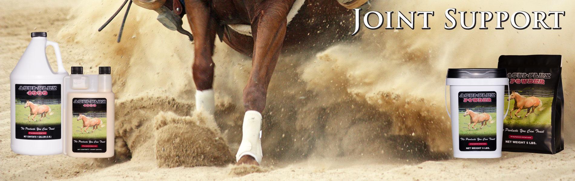 cox-vet-lab-acti-flex-horse-joint-supplement