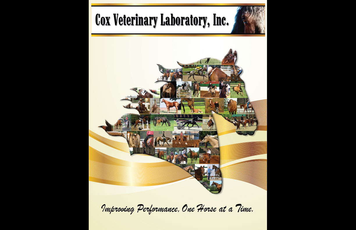 cox-vet-lab-catalog-cover