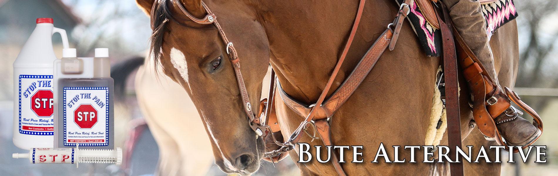 cox-vet-lab-horse-bute-natural-alternative