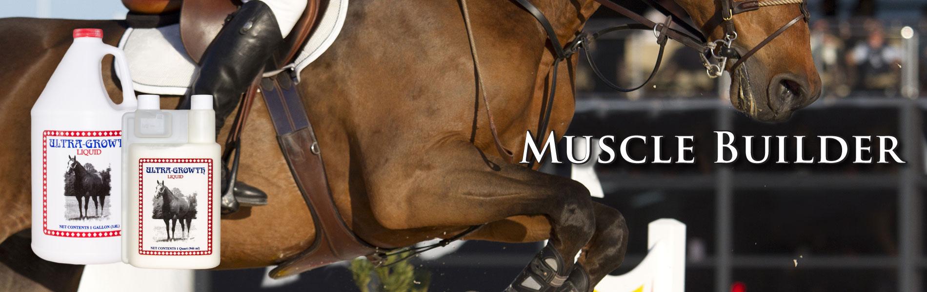 cox-vet-lab-horse-muscle-builder